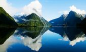 picture of fjord  - Milford Sound - JPG