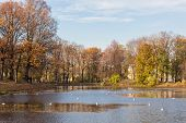 stock photo of sankt-peterburg  - Autumn landscape in Taurian park of Sankt - JPG