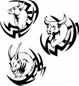 foto of bull head  - Bull head tattoo - JPG