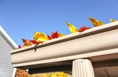 foto of gutter  - Colorful fall leaves in the gutter on a roof - JPG