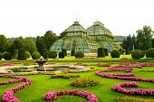 picture of schoenbrunn  - Greenhouse in summer Schoenbrunn garden in Vienna - JPG