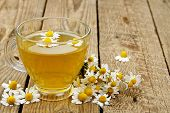 stock photo of chamomile  - cup of chamomile tea with chamomile flowers - JPG