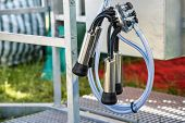 picture of teats  - Automated mechanized milking equipment closeup for farmland industry - JPG