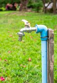 stock photo of spigot  - Close up faucet with in The Park  - JPG
