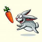 pic of rabbit year  - Funny little crazy rabbit running for carrots - JPG