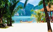 foto of phi phi  - Amazing view of the coast of the island of Phi Phi Don with long tail boat - JPG