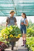 image of wheelbarrow  - Smiling gardeners discussing while pushing plants in wheelbarrow at greenhouse - JPG
