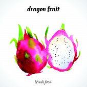 foto of exotic_food  - Watercolor dragon fruit  - JPG