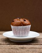 picture of chocolate-chip  - Homemade Chocolate chip muffin - JPG