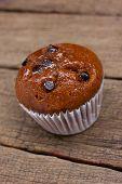 stock photo of chocolate-chip  - Homemade Chocolate chip muffin - JPG