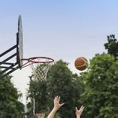 Street Basketball Game. Basketball Shield, Basket And Ball On Background Of Sky, Trees, Street In Su poster