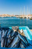 Marseille France. 22 June 2019. A View Of Fresh Seafood For Sale At The Old Port Fish Market In Mars poster