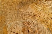 The Old Wooden Surface Of A Felled Tree, A Section Of The Trunk With Annual Rings And Cracks. Detail poster