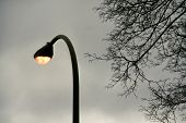 Illuminated Light Electric Lamp On Street In Twilight Time. Lamp Light On Pole On Twilight Sky Backg poster