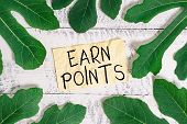 Conceptual Hand Writing Showing Earn Points. Business Photo Text To Get Praise Or Approval For Somet poster