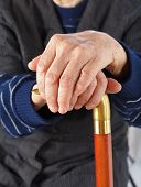 pic of crippled  - Elderly hands resting on the walking stick - JPG
