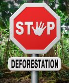 stock photo of deforestation  - stop deforestation - JPG