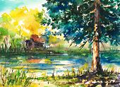 image of marsh grass  - Watercolors painted landscape  - JPG