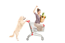 stock photo of bag-of-dog-food  - White retriever dog pushing a woman in a shopping cart isolated on white background - JPG