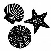 image of scallop shell  - Sea life silhouettes set starfish scallop shell sea urchin - JPG