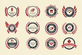 picture of trophy  - Achievement badges for games or applications - JPG
