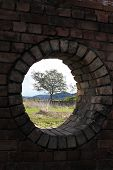 foto of blast-furnace  - Porthole in the Lithgow Blast Furnace with a view to a tree - JPG