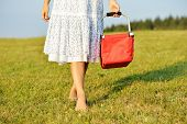 Girl walking with red basket on green meadow