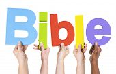 foto of bible story  - Group of Multiethnic Hands Holding Bible - JPG
