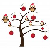 picture of snow owl  - vector tree with owls in Santa hats and red Christmas tree balls - JPG