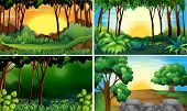 stock photo of jungle flowers  - Illustration of four different scene of forests - JPG
