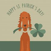 picture of shamrock  - St Patricks Day card design with Irish Setters and Shamrocks - JPG