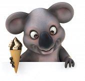 pic of koala  - Fun koala - JPG