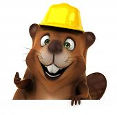picture of beaver  - Fun beaver - JPG