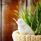 picture of grass bird  - Easter background with and cute white porcelain bird in green grass in the nest - JPG