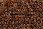stock photo of spit-roast  - Macro of roasted coffee beans laying in rows on a straw mat - JPG