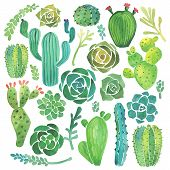 image of cactus  - Watercolor cactus and succulent set on white background - JPG