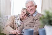 stock photo of grandma  - Happy grandma and grandpa sitting on the sofa - JPG