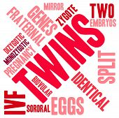 pic of zygote  - Twins word cloud on a white background - JPG