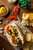 foto of wiener dog  - Homemade Chicago Style Hot Dog with Mustard Relish Tomato and Onion - JPG