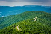 picture of virginia  - View of the Blue Ridge Mountains from Little Stony Man Mountain in Shenandoah National Park Virginia - JPG