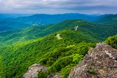 picture of blue ridge mountains  - View of the Blue Ridge Mountains from Little Stony Man Mountain in Shenandoah National Park Virginia - JPG