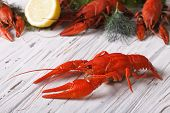 picture of boil  - crayfish boiled with lemon and dill on a table close up - JPG