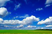 stock photo of blue sky  - The green field on background blue sky - JPG