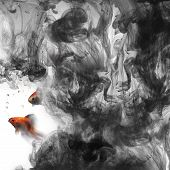 stock photo of glass water  - golden fish swim out of the dirty ink - JPG