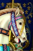 Charging Carousel Horse poster