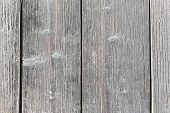 Wood Texture Background, Light Weathered Rustic Oak. Faded Wooden Varnished Paint Showing Woodgrain  poster