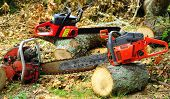 pic of chainsaw  - Chainsaw Woodcutters Dream arrangement of wood cutting equipment - JPG