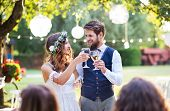 Wedding Reception Outside In The Backyard. Bride And Groom Clinking Glasses. poster
