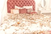 Chic Retro King Size Bed Strewn With Feathers From The Pillow. Pillow Fight In The Room. poster