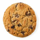 foto of greedy  - Chocolate Chip Cookie isolated on White background - JPG